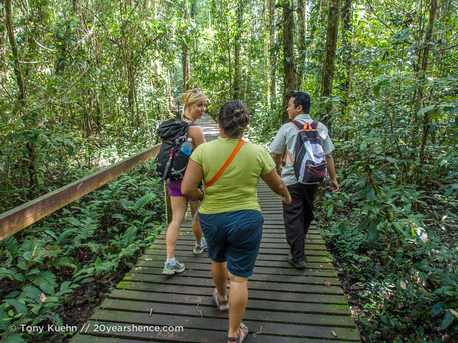 One of the many walkways through Mulu National Park