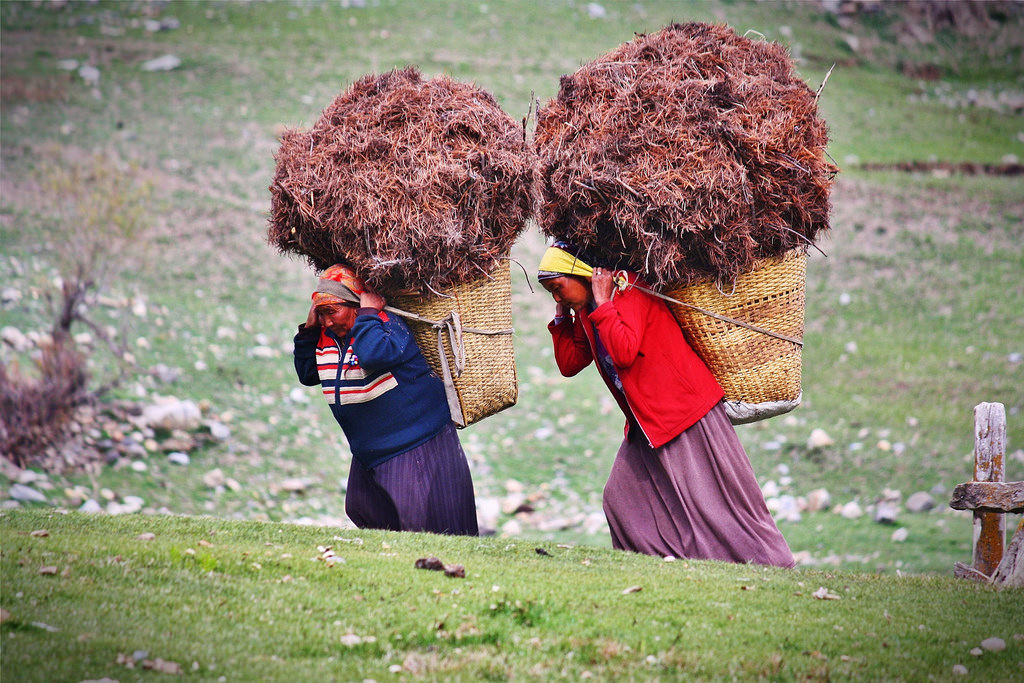 Our photo was taken just outside the village of Braga, Nepal while trekking the Annapurna Circuit. The photo captures the incredible strength of the local people who transport huge loads on their backs, not only men but women as well. We were smitten by the quiet focus and determination of these two superwomen!